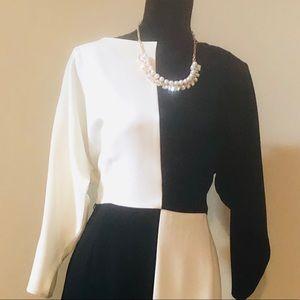 Teri Jon Designer Black/White Color Block Dress